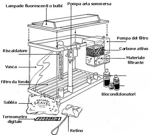 Buona aerazione tramite un aeratore connesso mediante tubi for Filtro vasca pesci